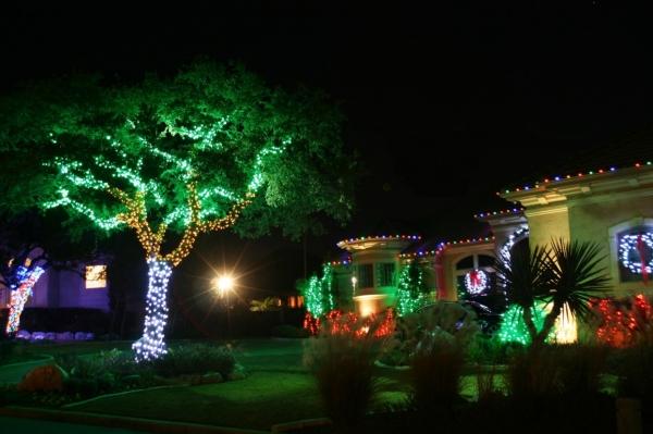 Đèn LED chiếu sáng cây xanh nên dùng loại nào
