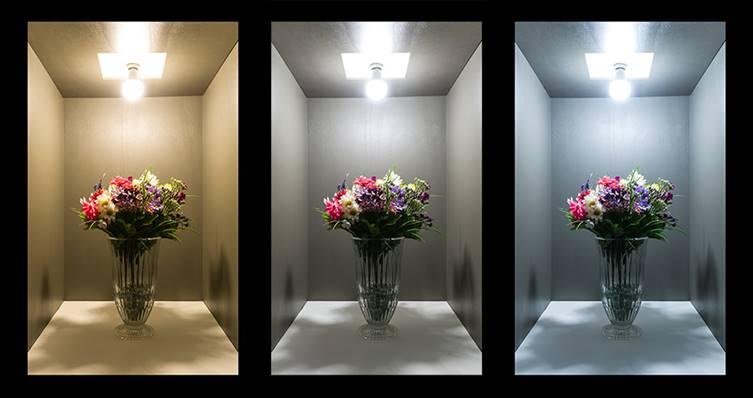 Lựa chọn Nhiệt độ màu của đèn LED phù hợp với không gian chiếu sáng